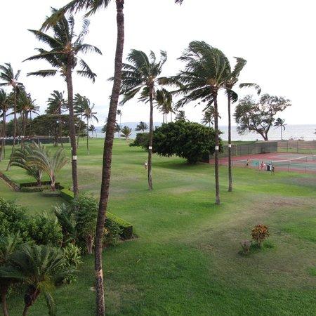 Luana Kai Resort : территория 1