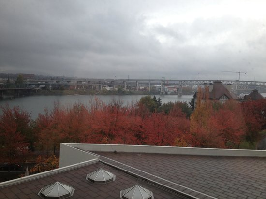 Portland Marriott Downtown Waterfront : Great view of the riverfront