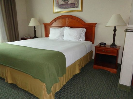 Best Western Plus Woodway Waco South Inn & Suites: bed
