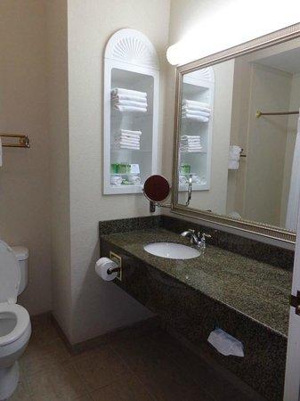 BEST WESTERN PLUS Woodway Waco South Inn & Suites: bathroom