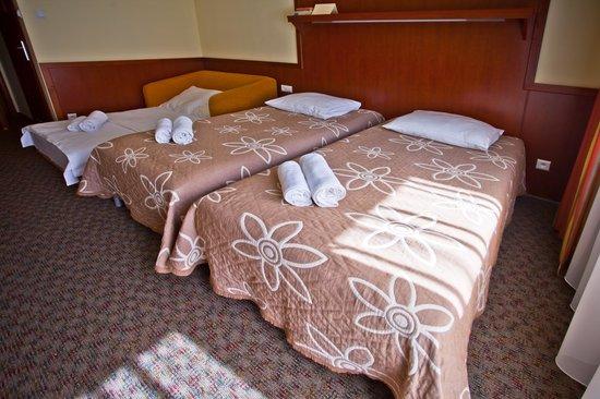 Wierchomla Ski & Spa Resort: Pokój Dwuoosobowy +