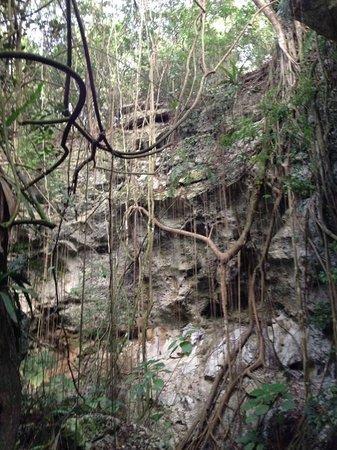 Cueva de las Maravillas: The cave entrance