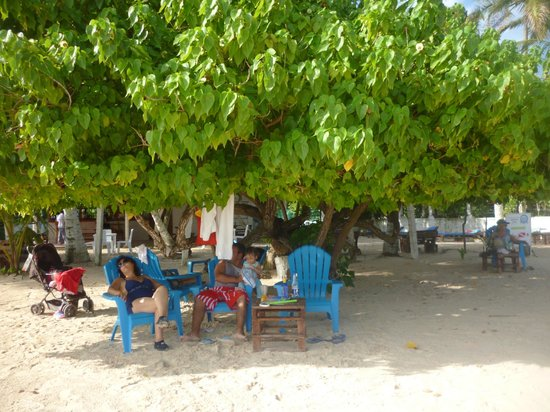 The Grog Rocky Cay San Andres : Hermoso