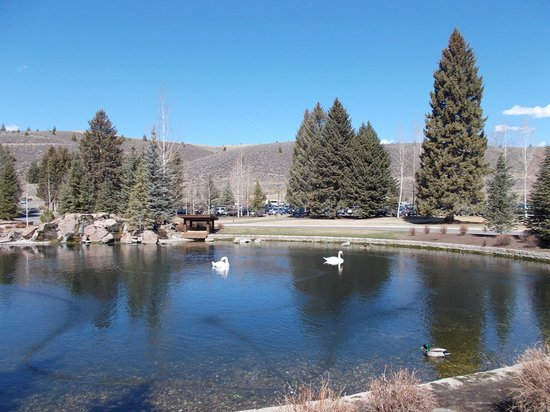 Sun Valley Lodge: Pond front of Lodge