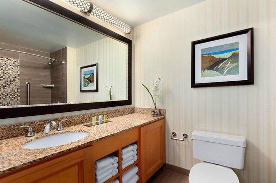 DoubleTree Suites by Hilton Orlando - Disney Springs Area : Standard Bathroom