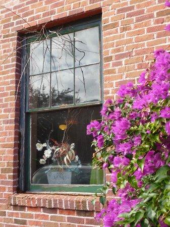 Edgewater Hotel: window