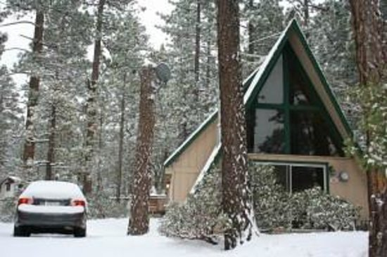 Cabins4less : Snow, squirrels, blue birds and refreshing mountain air! (Cabin 303)