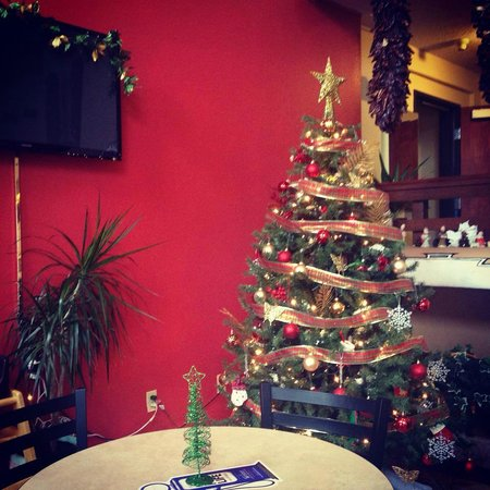 Super 8 by Wyndham Santa Fe: Our Christmas Tree!