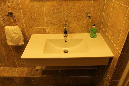 Edgerton Hotel : Bathroom