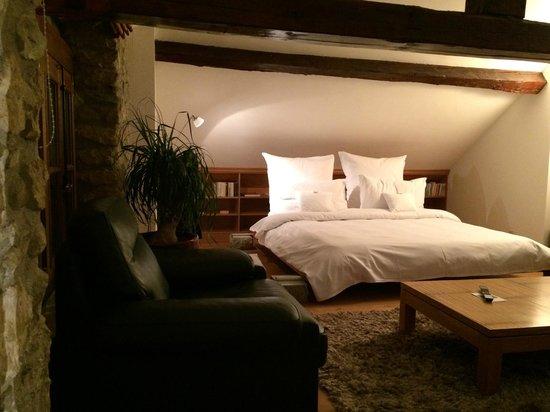 Domaine De Chateauvieux: chambre 1