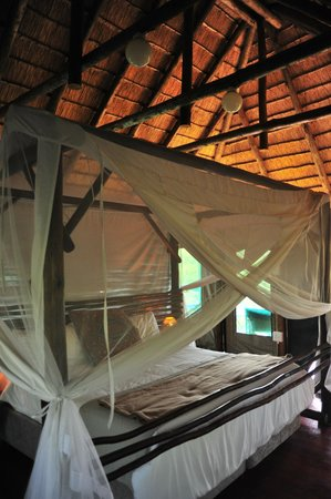 Muweti Bush Lodge: Slept like a queen.