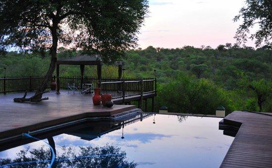 Muweti Bush Lodge : A pool with a wiew.