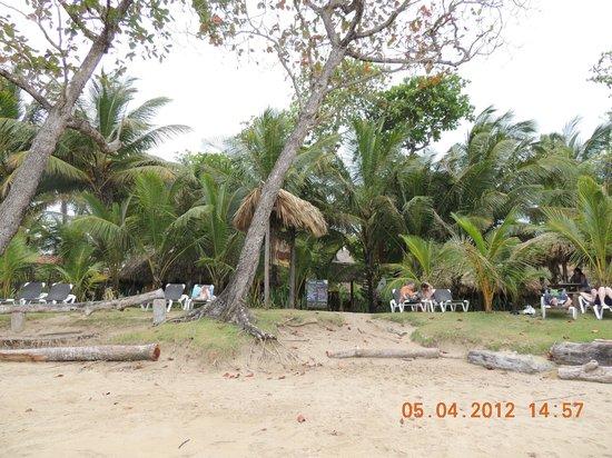 Natura Cabana Boutique Hotel & SPA : Vista do hotel....da praia