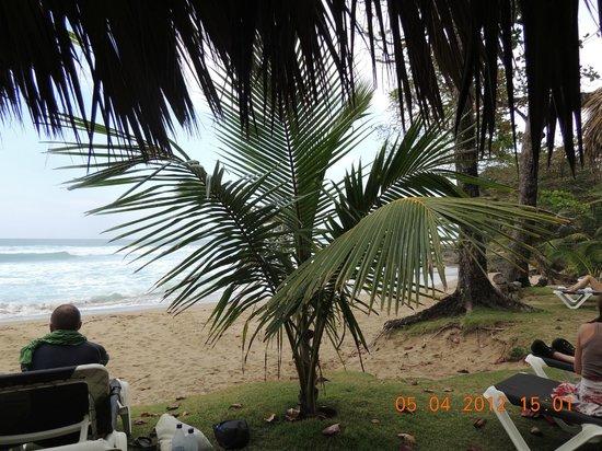 Natura Cabana Boutique Hotel & Spa: Vista do hotel