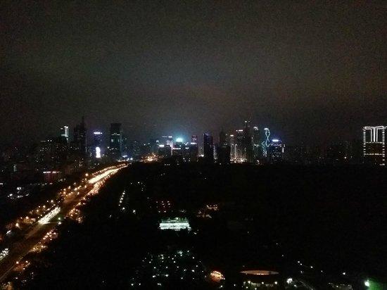 JW Marriott Hotel Shenzhen: View from room