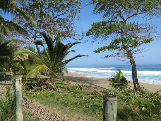 Cabarete Maravilla Eco Lodge & Beach : Praia em frente