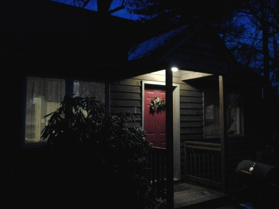 Royal Oaks Cabins: Cabin #7 in the still of  beautiful night.
