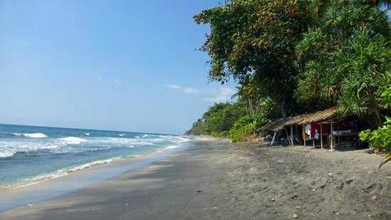 Qunci Villas Hotel: Verkaufsstände am Strand