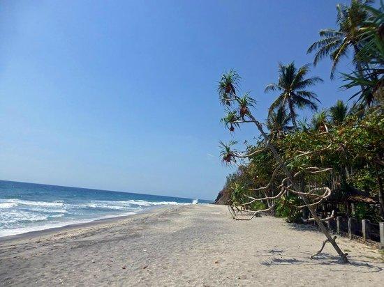 Qunci Villas Hotel: Der Mangsit Beach