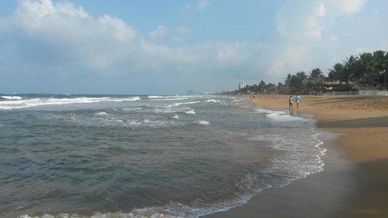 Mount Lavinia Beach : Beach-3
