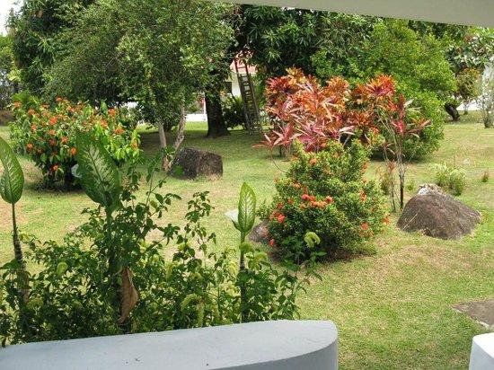 Daniella's Bungalows: Garden View