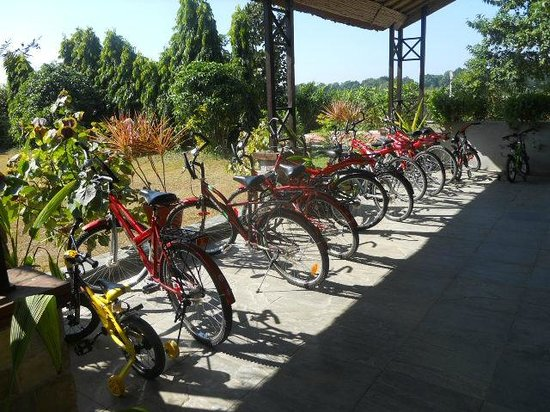 Aahana the Corbett Wilderness: Cycles available