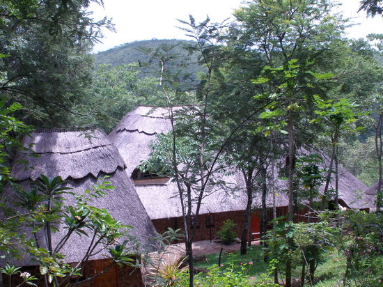 Bushbaby Lodge: Main house and cottage