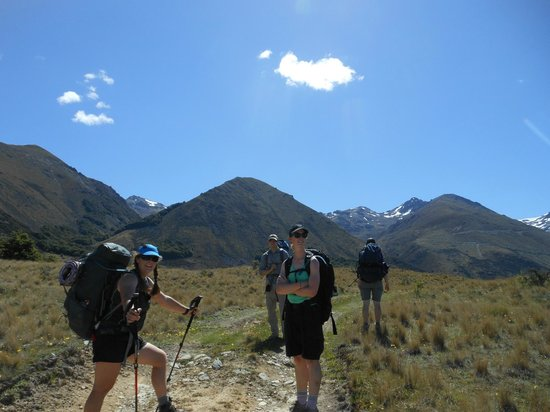 Hiking New Zealand - Day Tours: Hiking New Zealand