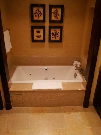 JW Marriott San Antonio Hill Country Resort & Spa : tub