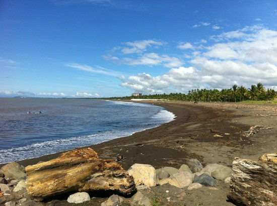 Doubletree Resort by Hilton, Central Pacific - Costa Rica: View of beach from edge of property
