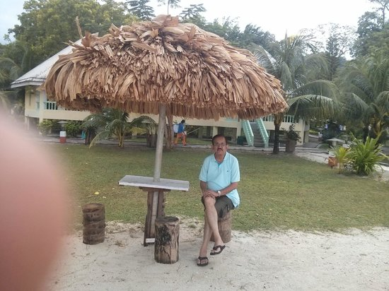 Dolphin Resort: Shade
