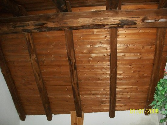 Agriturismo Fiorendo: il tetto della camera