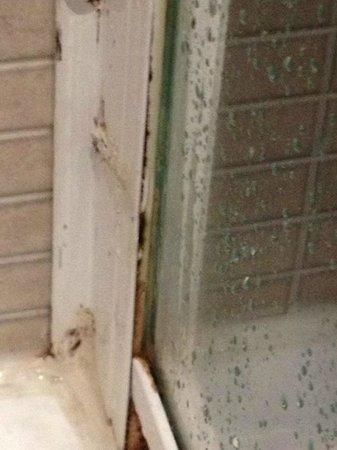 Petit Palace Arana: Moho en la ducha