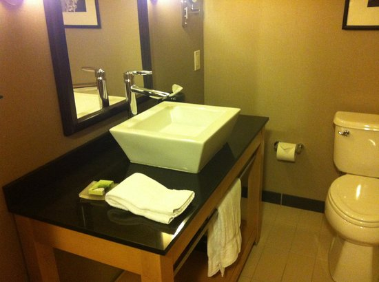 Cambria Hotel & Suites Rapid City: Well-designed modern bathroom