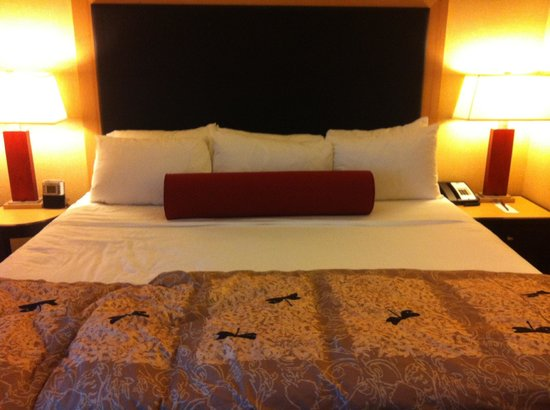 Cambria Hotel & Suites Rapid City: Very comfortable king bed