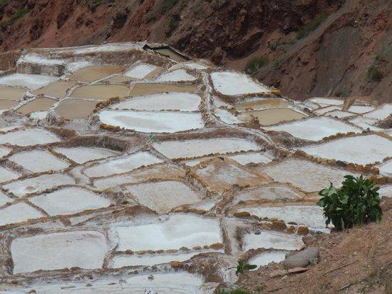 Salinas de Maras: Salineras de Maras