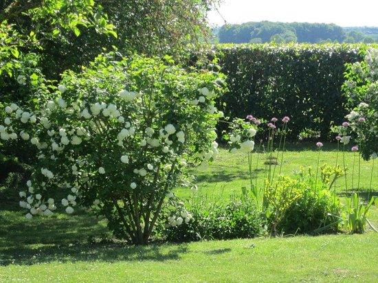 La Cotinière Chambres d'hôtes et gîte : Garden