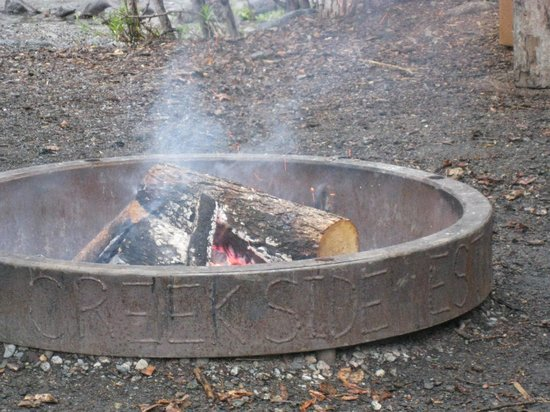 McKinley Creekside Cabins: Outdoor fire ring