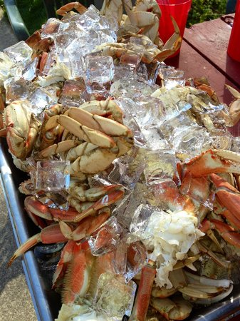 Neahkahnie Bistro: Lots of Crab for a catering!