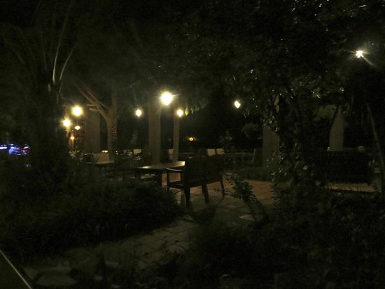Happy Caretta Hotel : The garden right before dawn.