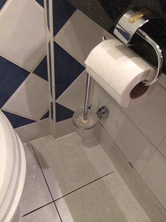 Greenhills Conference and Leisure Hotel: Toilet brush