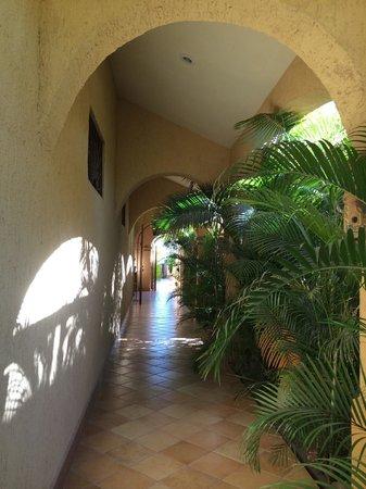 Hamman's Vacaciones de Renta en Loreto: One of the entrances to the property