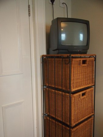 Botanic View B & B: Small television