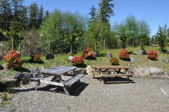 Cabins West : Picnic area