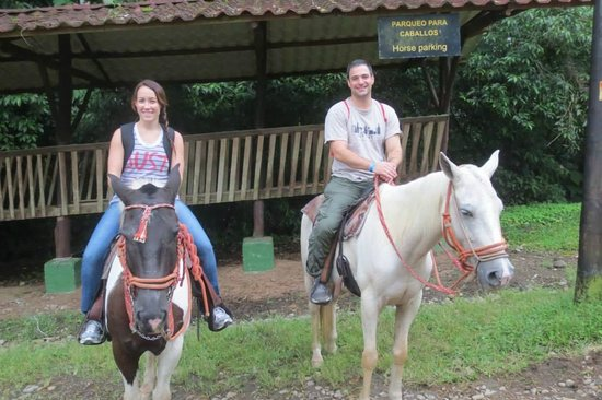 Alberto's Horses: Horse Parking
