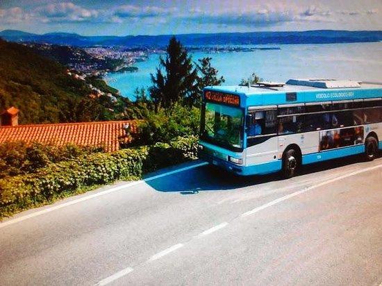 Opicina Tramway: Vista da Contovello, in attesa che il tram riprenda la sua corsa (calendario 2011 TriesteTraspor