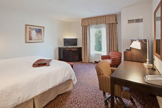 Hampton Inn Kingston: 1 King Bed Guest Room