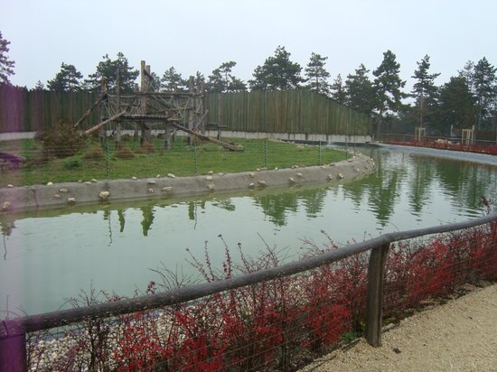 Veszprem Zoo: The playground