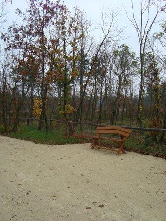 Veszprem Zoo : Autumn is the most beautiful Season of all