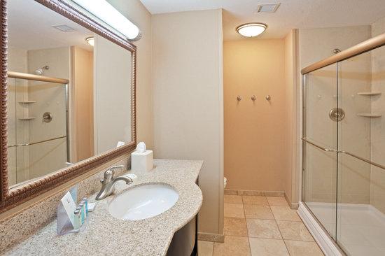 Hampton Inn Kingston: Guest Room Bathroom